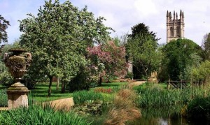 Botanic of Garden