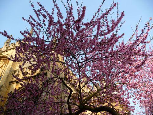 Wiosenna ekspolozja